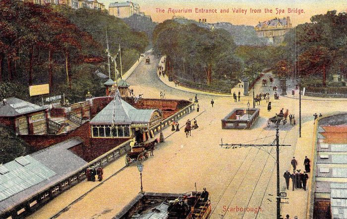 A Postcard depicting the Scarborough Aquarium - Courtesy Adrian Spawforth from his wonderful site 'Postcards of Scarborough.'